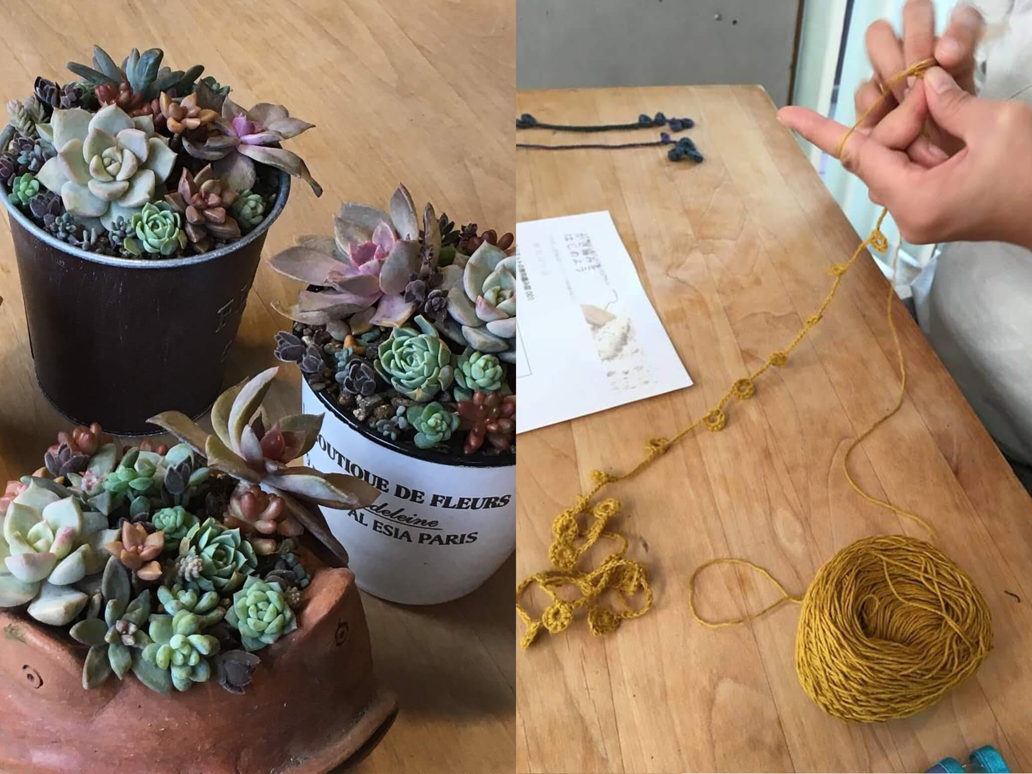 多肉植物の寄せ植え、かぎ針編みのワークショップ