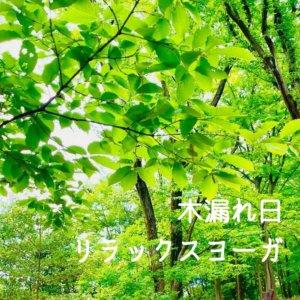 「木漏れ日リラックスヨーガ」開催! 〜心と体をゆるめよう〜